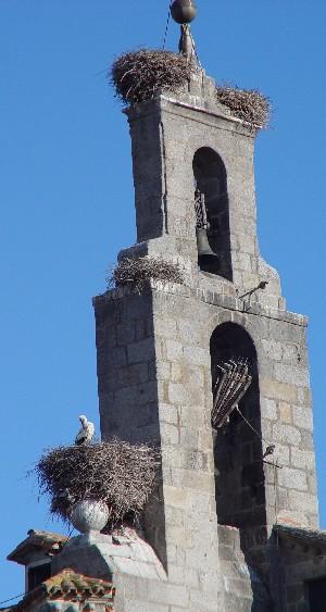 コウノトリの巣 カルメン門の塔 Photo by Kohyuh 2005/04/22