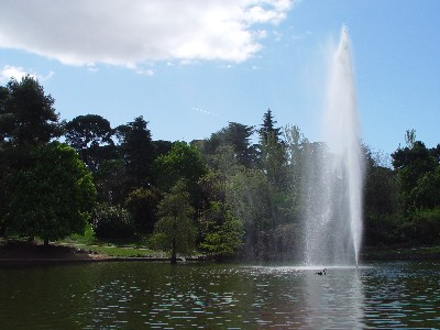 ガラスの宮殿前の池